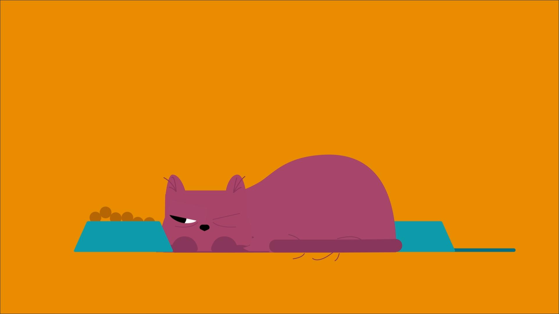 caroon cat